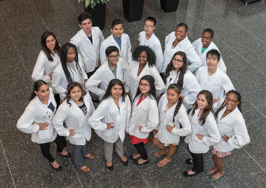 Classes of 2014 through 2016 --Northwestern Medicine Scholars on Northwestern Medicine's main campus.